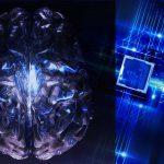 human brain neural net deep mind