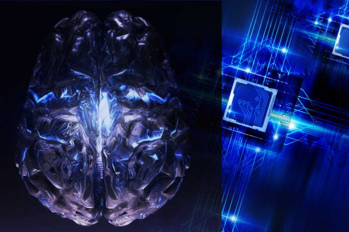 human brain neural net deep mind