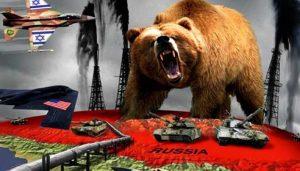 russian-bear-708x404