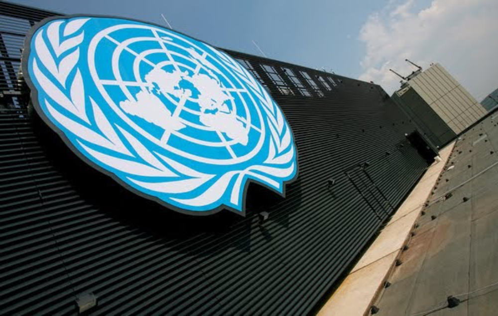 """United Nations 'Expert' - """"We are well on our way to the ..."""